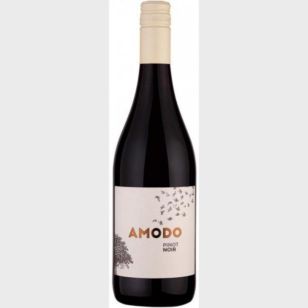 Amodo Pinot Noir 2018 Provincia di Pavia